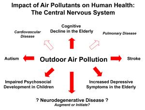 Air Pollution Impacts Brain Health 1