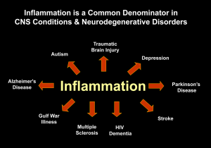 Inflamamtion In CNS Disease